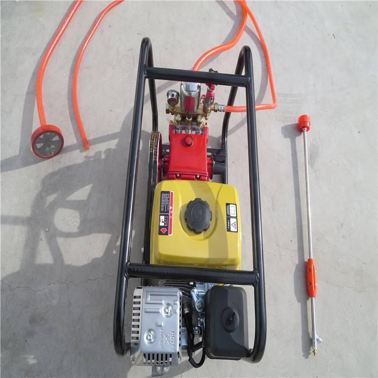 手推式喷雾器 汽油高压喷射喷雾器