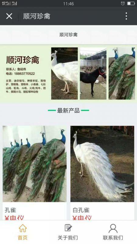 http://himg.china.cn/0/4_82_237674_450_800.jpg