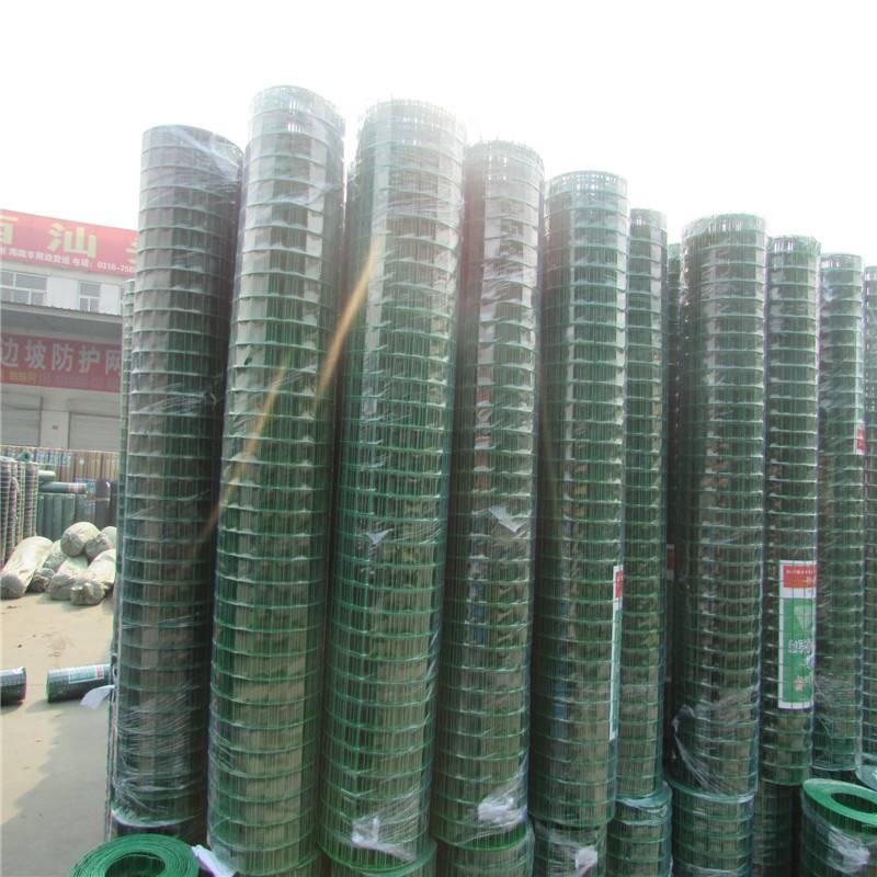 养鸡防护网 荷兰网厂家 散养鸡铁丝网