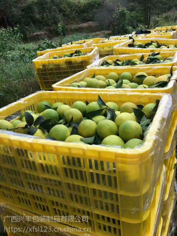 厂家直供优质塑料筐批发 广西水果筐 塑胶菜萝周转箩 塑料柑橘筐耐用环保