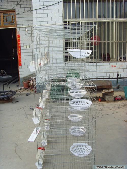 安平兴博长期供应鸽子笼配件窝巢,白色塑料鸽子蛋窝