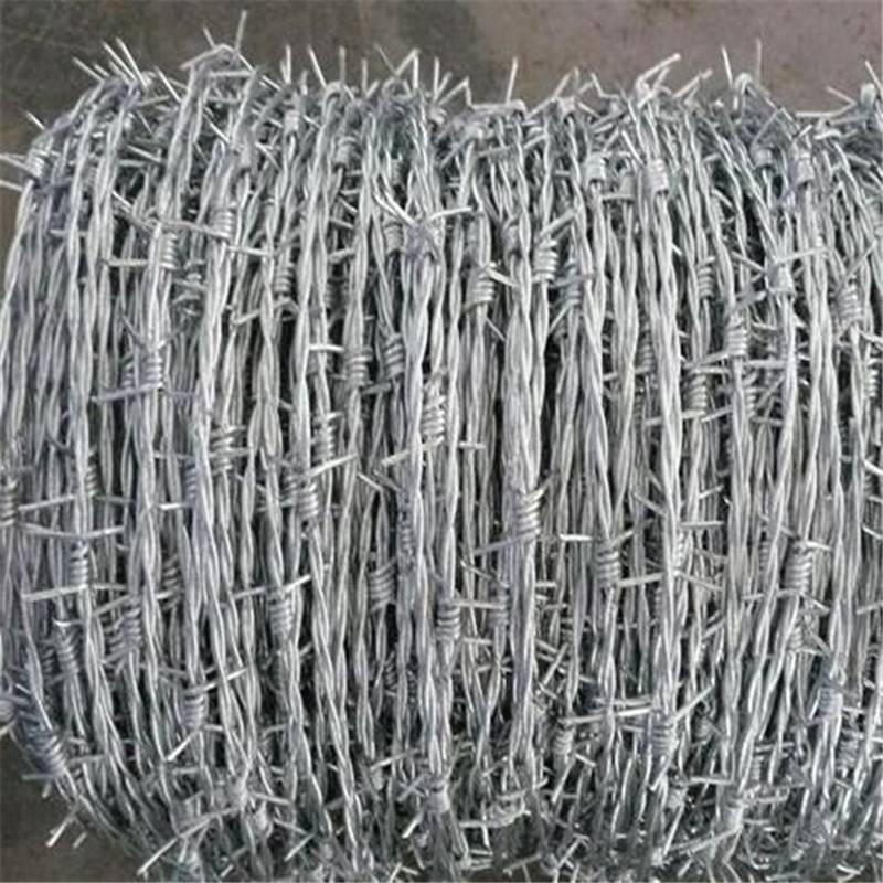 镀锌刀片刺网 监狱刀片刺网 刺绳厂家