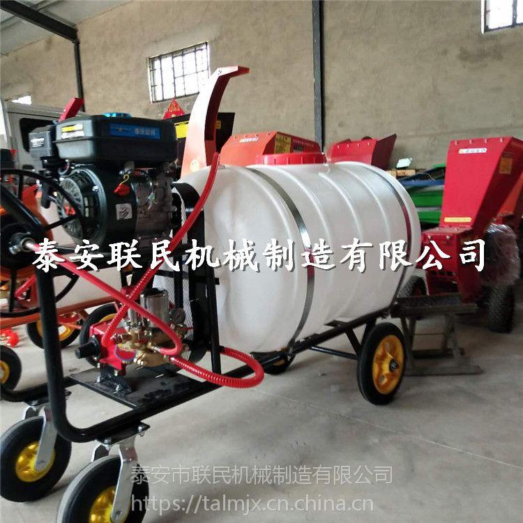 泰安联民供应 多功能手推式打药机 汽油低油耗高远射程农用打药机