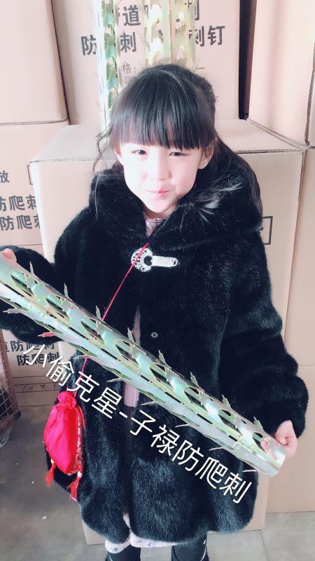 广州长寿天然气管道阻盗刺现货基地@长寿金牌物业防盗产品子禄小偷克星外形美观实用