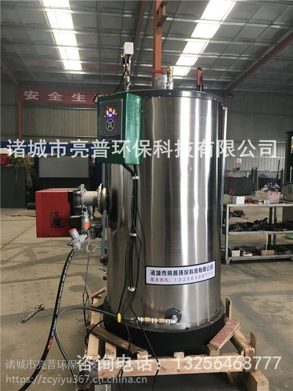 燃气蒸汽发生器亮普LP生产厂家,自然循环锅炉