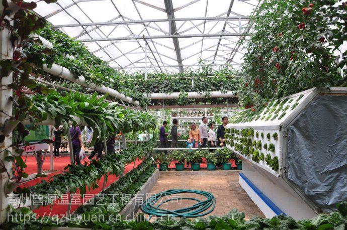 河南旅游观光生态温室大棚外框玻璃型、可智能控制
