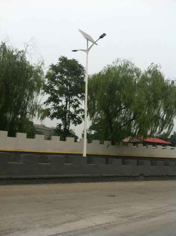 http://himg.china.cn/0/4_849_1059029_599_800.jpg