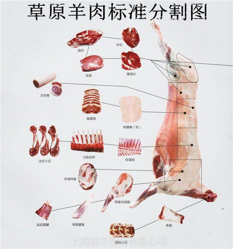上海市场羊肉价格_【批发牛肩胛肉进口冷冻牛肉保乐肩西餐厅专用肩胛肉】价格 ...