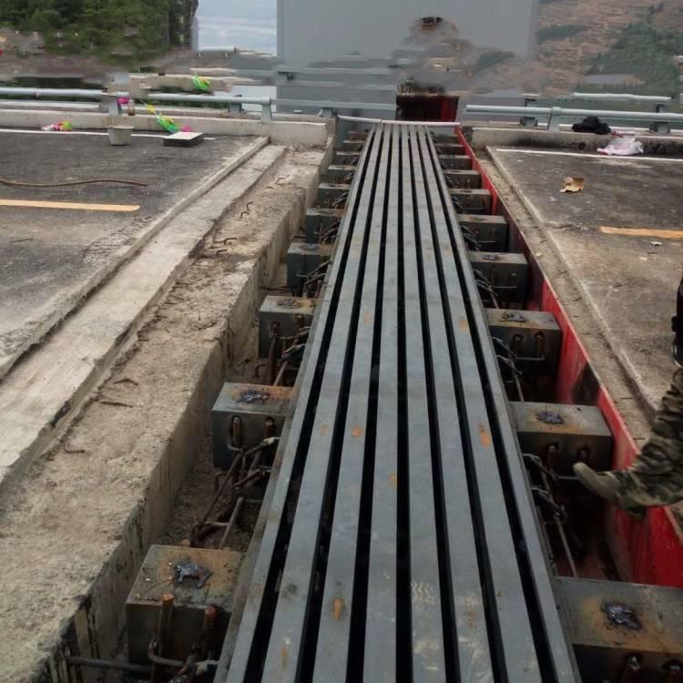 GQF-F240 型多组式桥梁伸缩缝 陆韵 伸缩缝 安装规范