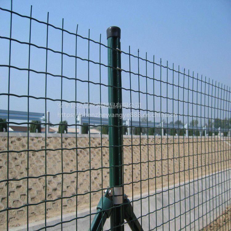 厂家直销包塑绿色荷兰网 圈地养殖绿色安全防护围栏网 浸塑玉米网