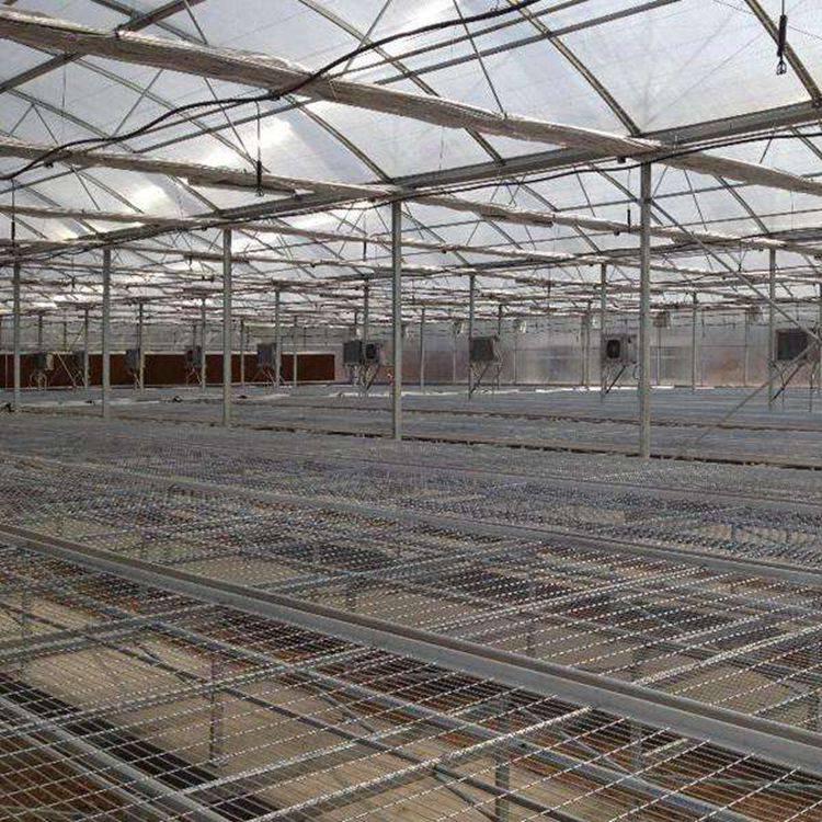 厂家供应热镀锌养花网网片汉明可移动温棚育苗网发货快