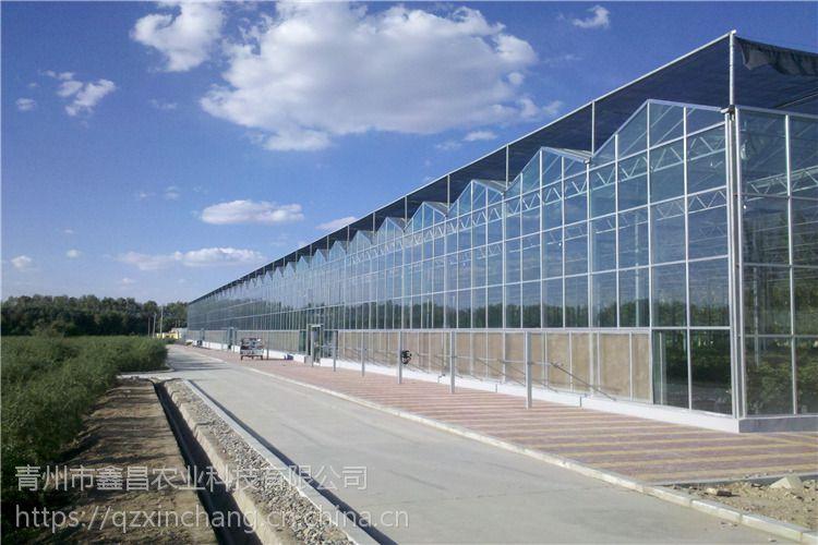 内能全玻璃框架生态采摘园大棚温室尖拱纹络型工程价格