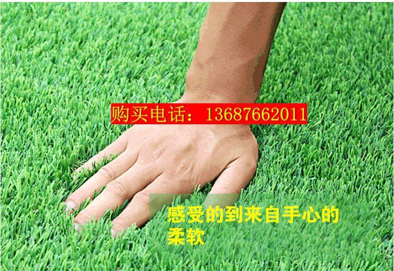 【知乎】户外人造草坪一平方价格#优质
