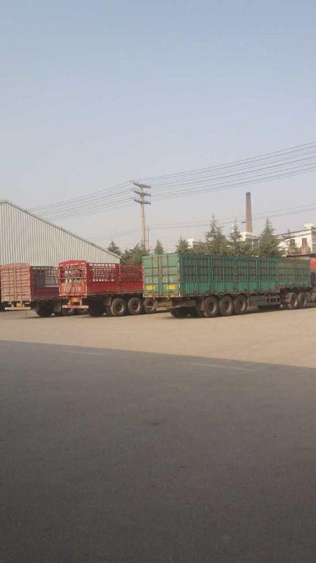http://himg.china.cn/0/4_855_238450_450_800.jpg