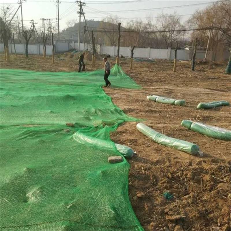 防尘盖土网 绿化防风网 聚乙烯盖煤网