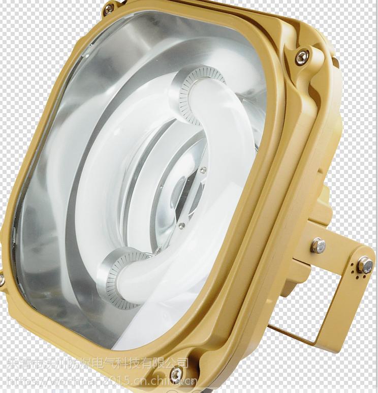 bfc8183防爆固态安全照明灯单价出上海发货