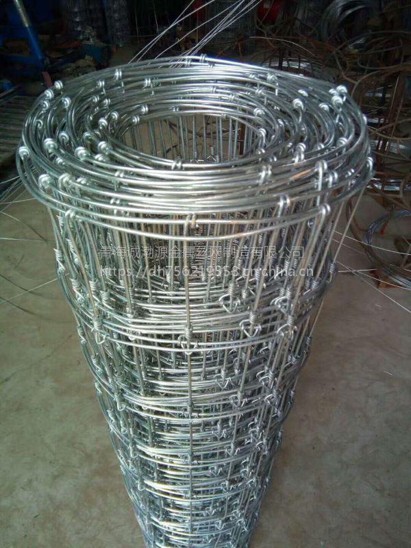 供应西宁隔离珊网/围栏网厂/镀锌牛栏网大量现货