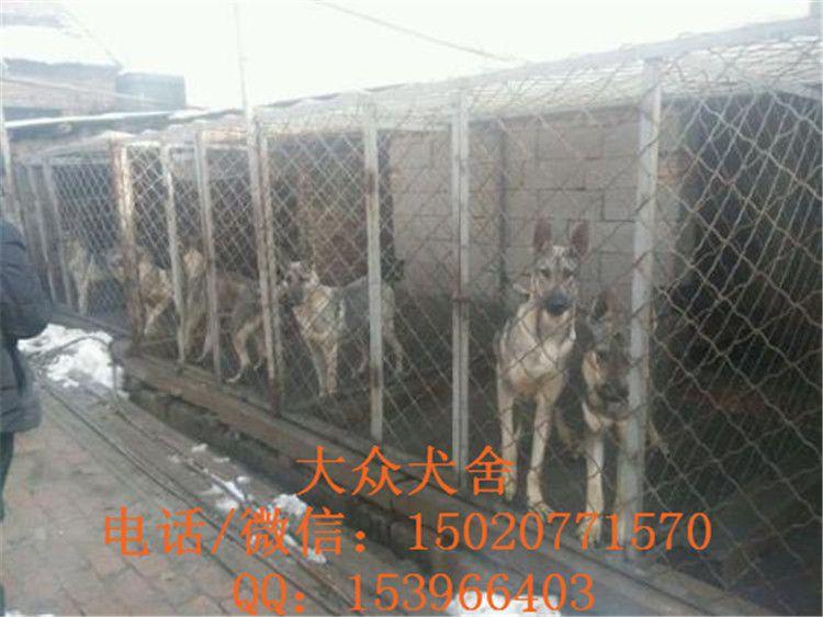 http://himg.china.cn/0/4_863_242570_750_562.jpg