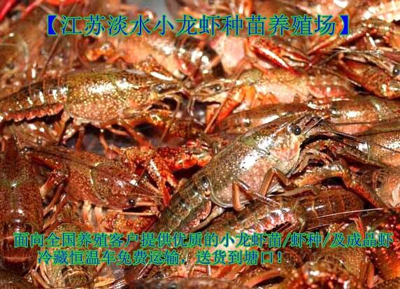 http://himg.china.cn/0/4_871_1039143_572_413.jpg