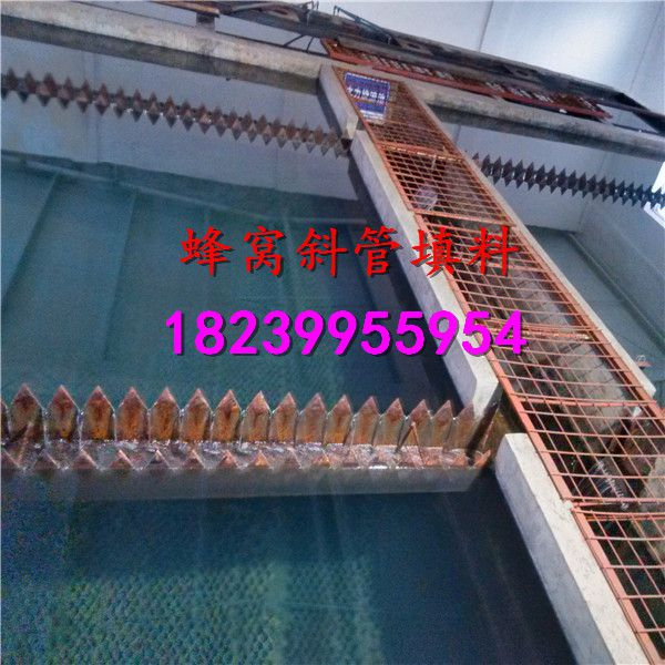 http://himg.china.cn/0/4_876_243766_600_600.jpg