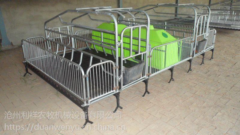 养猪用设备 母猪产床为二师兄定制舒适的生活环境