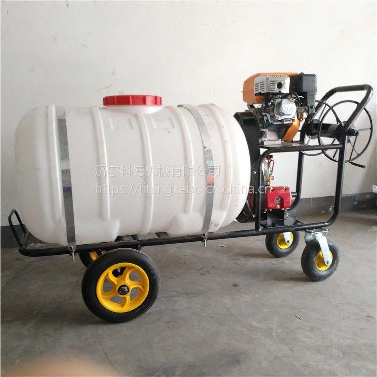 厂家直销多功能农用喷药机科博机械手推式汽油打药机手推喷雾机