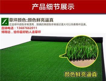 【经验谈如何正确购买】 加密人造草坪仿真草坪 无毒