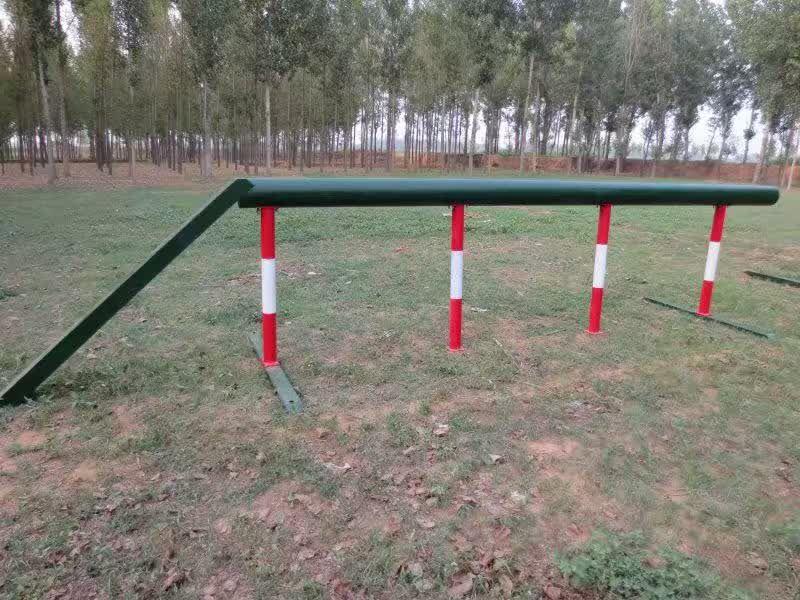 http://himg.china.cn/0/4_880_231664_800_600.jpg