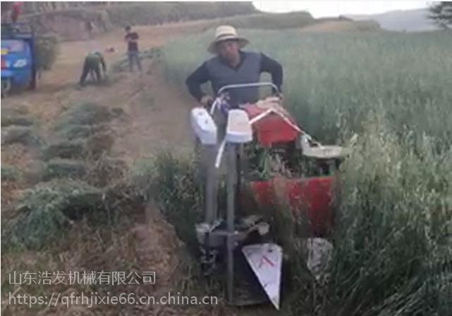 汽油大马力手推割晒机 辣椒小麦割晒机 玉米大豆收割机