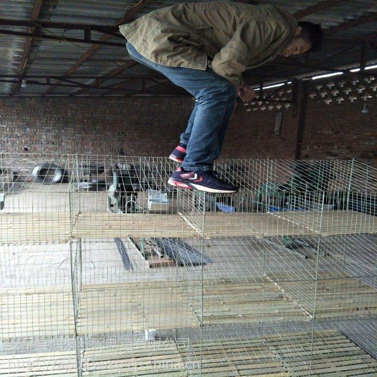 批发定做12位商品兔笼 12位育肥兔笼 12位子母产仔兔子笼 立式可移动兔子笼