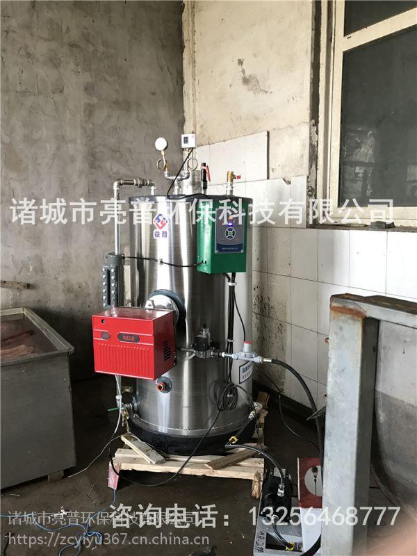 燃气蒸汽发生器亮普LP生产厂家,快速产汽