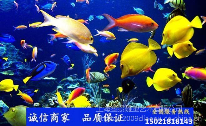 定制玻璃钢彩绘鱼群雕塑 海底世界景观雕塑 海洋馆布景雕塑 深圳雕塑厂
