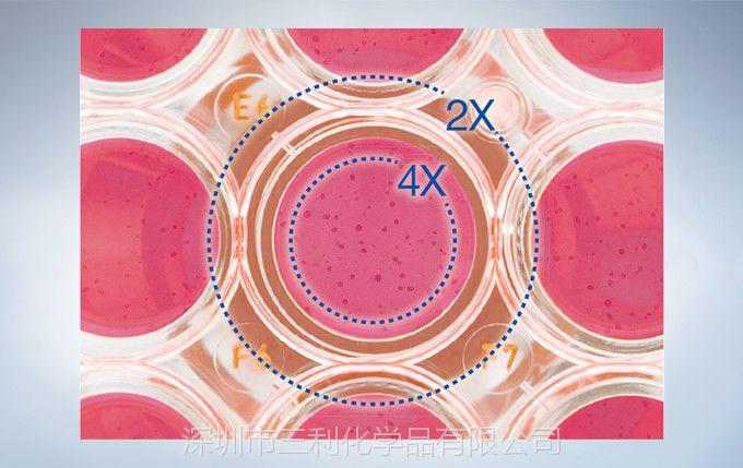 CKX31奥林巴斯倒置显微镜 显微镜广州批发