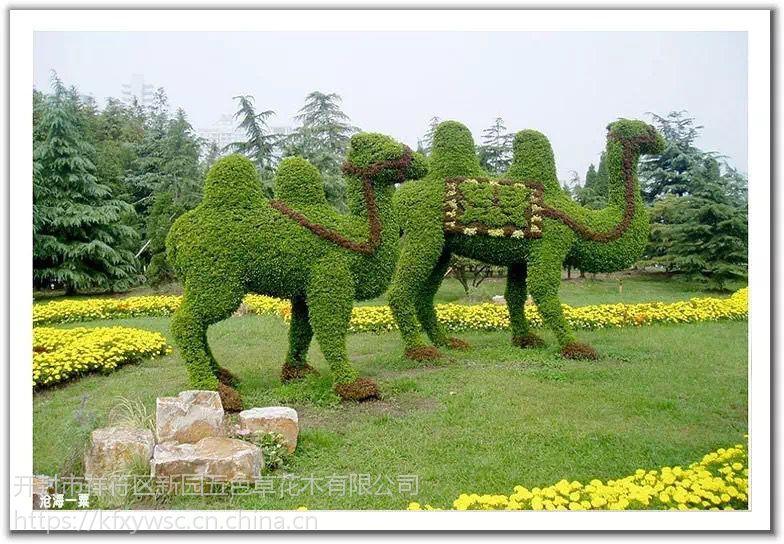 开封市新园五色草动物立体造型003