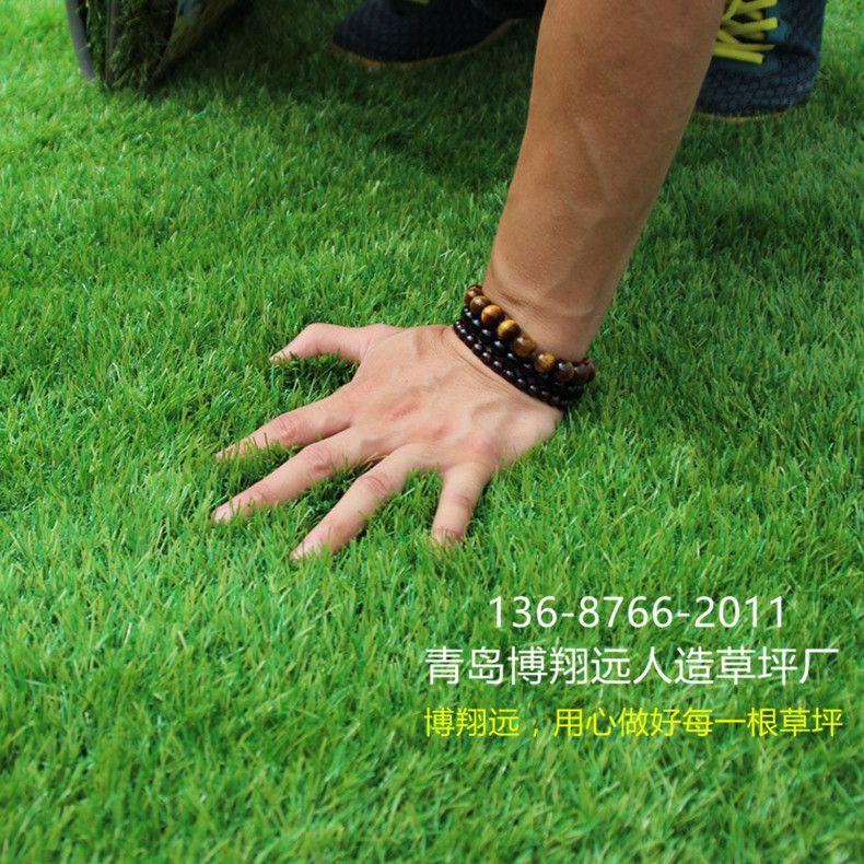 【经验谈怎么买才正确】 35mm人造草坪仿真草坪 无毒