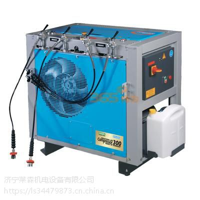 枣庄梅思安300H/300HG高压呼吸空气压缩机价格