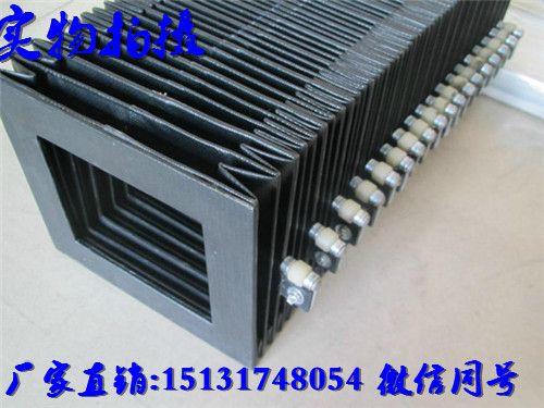 http://himg.china.cn/0/4_899_238426_500_375.jpg