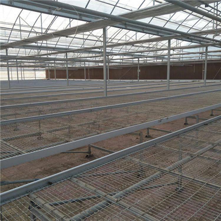 温室可移动苗床网热镀锌网片不生锈的苗床网@汉明