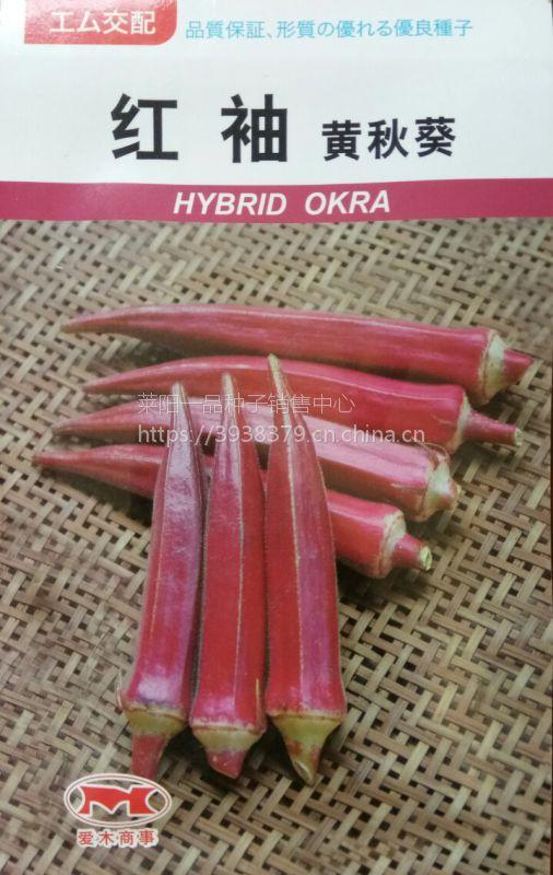 红袖黄秋葵种子日本原种进口品种
