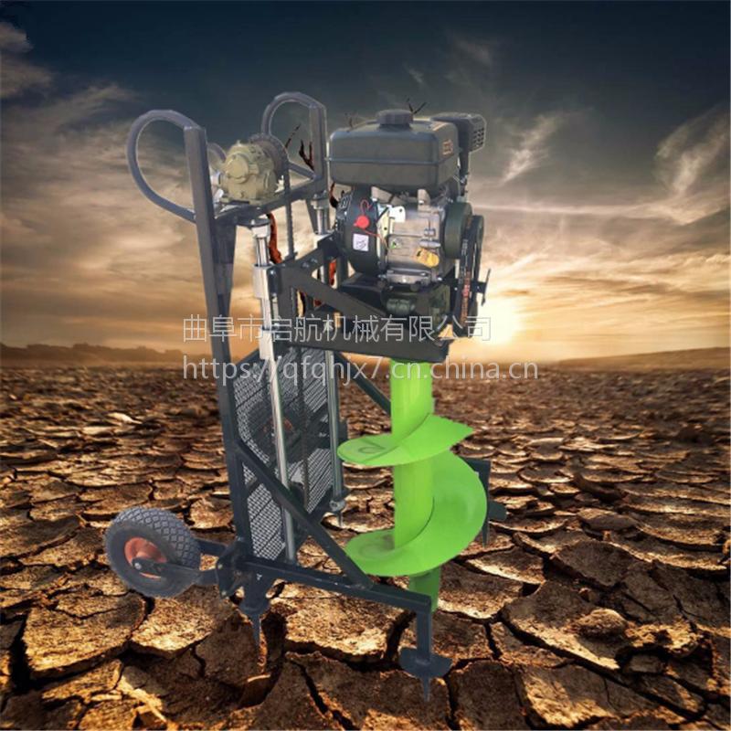 种植苗圃花苗挖坑机 启航小直径打眼机 单人手提式挖坑机直销