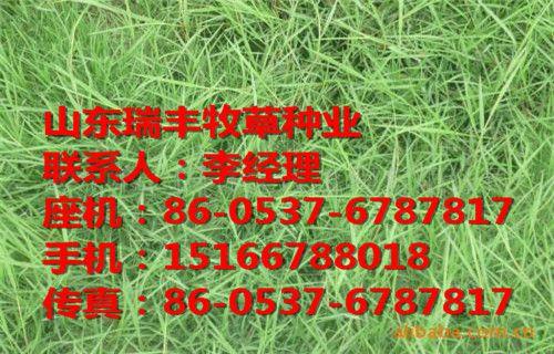 http://himg.china.cn/0/4_908_237658_500_320.jpg