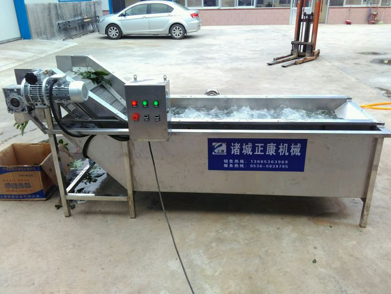 正康直供全自动果蔬清洗机 多功能连续式 叶菜类清洗设备