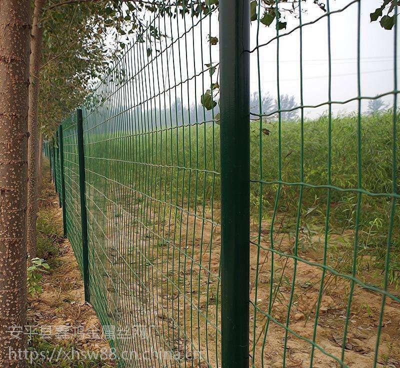 供应养鸡围栏网 荷兰网 铁丝防护网