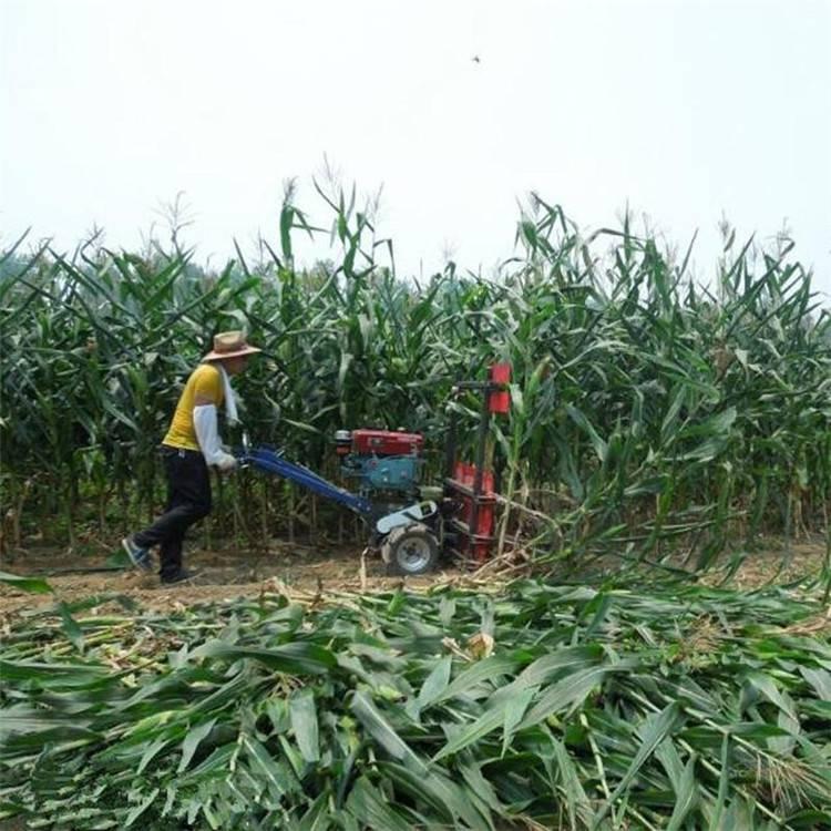 低油耗牧草收割晾晒机 摊铺平整朝天椒割晒机