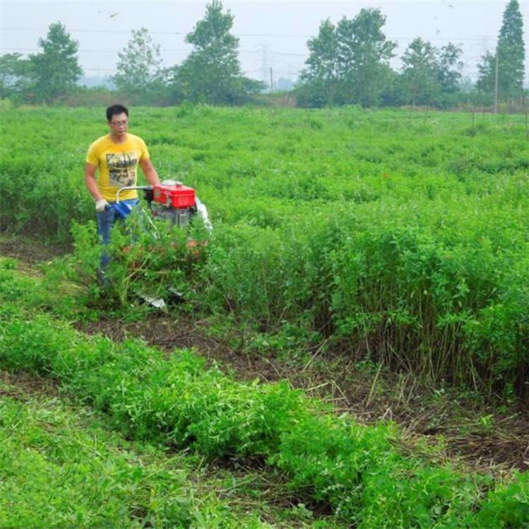 农用自走式割晒机 生产效率高收割机