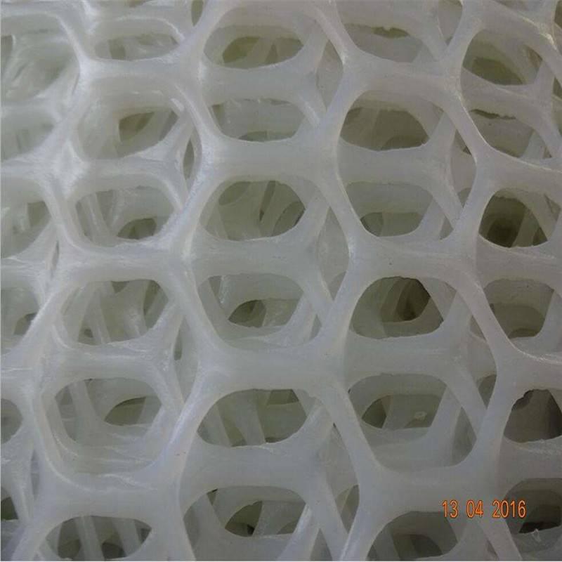 绿化塑料平网 养殖用塑料平网 养殖网规格