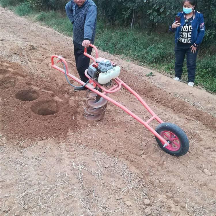 怀来县大棚埋桩钻坑机 启航牌果树追肥旋坑机 防风固沙植树挖坑机厂家