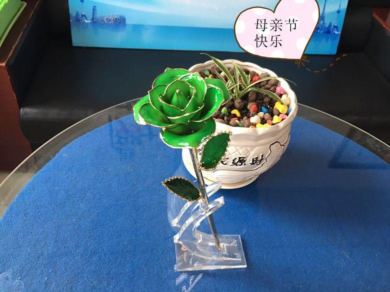 母亲节创意定制款礼物  绿色镀金玫瑰花青春永驻