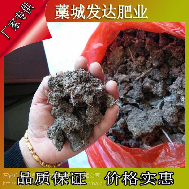 辽宁营口质量好又好卖的鸡粪是哪种?发酵腐熟鸡粪会发生烧根吗?