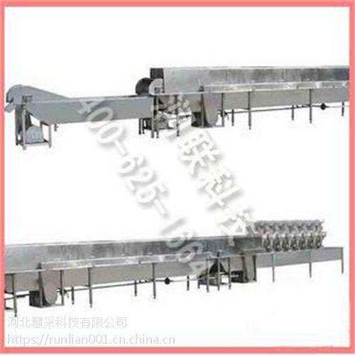 舟山肉丸成型蒸煮流水线 XRL-8肉丸成型蒸煮流水线的厂家